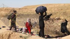 IDPs vote in four different methods