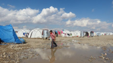 86 camps still house thousands of IDPs across Iraq