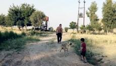داعش ليلاً وكورونا في النهار..<br> خطران يعيقان عودة الحياة الى قرية سيد ولد الكاكائية