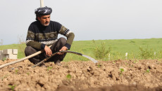 Kirkuk: Farmers warns of fruit and vegetable shortages amid coronavirus traffic ban