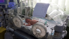 Kerkük'te doğum oranında artış