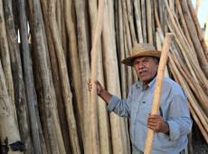 28 yıldır odun satıyor