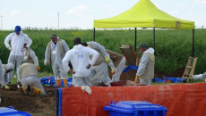 Toplu mezarlardan çıkarılan 124 kişinin kalıntısı Bağdat'ta gönderildi