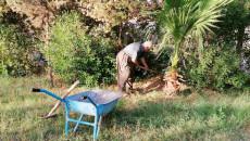 Ebubekir Hüseyin mahallesindeki kurak bahçeyi hayata döndürdü