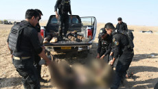 4 ISIS militants down in retaliation by ISF