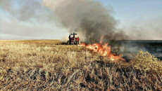Some 30 donums of wheat crop fields in Shingal set on fire