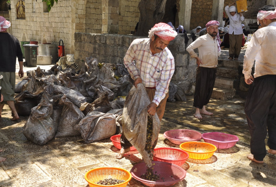 The olives are later stored at the main oil store in Lalish until April.