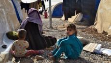 Uluslararası Göç: Naynawa'nın nüfusu en çok etkilenen ve insani yardıma muhtaç