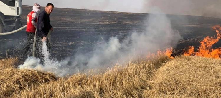 Telafer'de buğday tarlası yangınlarını söndürürken üç kişi öldü, dört kişi yaralandı